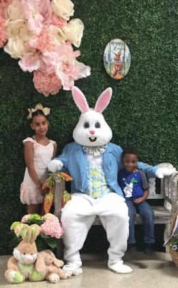 Easter Bunny photos have been postponed at Parkdale Mall.