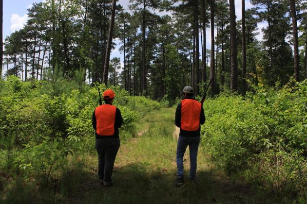 Big Thicket hunting